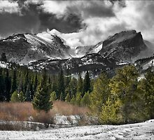 Cold Afternoon by Trevis Thomas
