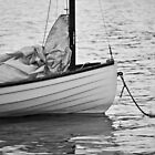 Sail Boat by Robert  Miner