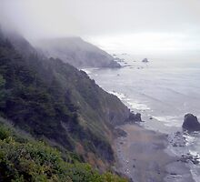 Fog Of The Pacific Ocean by marilyn diaz