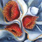 Eucalyptus Macrocarpa   1 by Vickyh