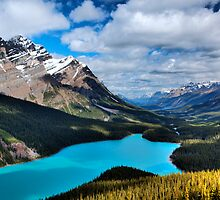 Peyto Lake by Jordan Whipps