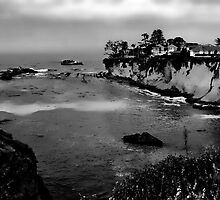 Living On The Seacliffs by CarolM