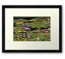 Water Lily Pond...Lotus-in-Motion Art Framed Print