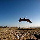 Wings Beneath My Feet by maggiebarra