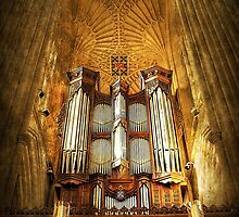Organ by Svetlana Sewell