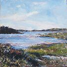 iona from mull, scottish westen isles by christine vandenhaute