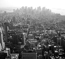 New York Skyline - Lower Manhattan by Jeffrey West