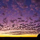 Uluru Dawn by Dieter Tracey