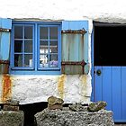 Blue Blue, Our Door Is Blue by Loree McComb