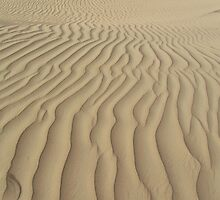 Dubai - Sandscape by soulimages