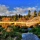 Autumnal Colors(Pano) by Larry Trupp
