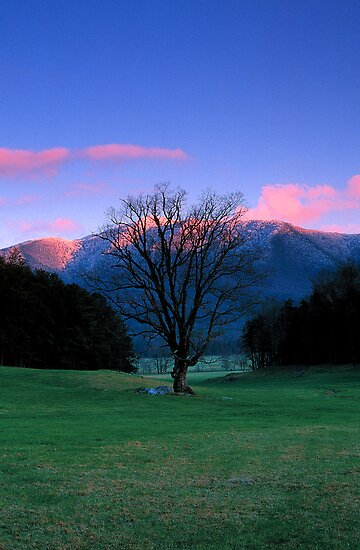 WINTER SUNSET,CADES COVE* by Chuck Wickham