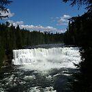Dawson Falls by Jeff Ashworth & Pat DeLeenheer