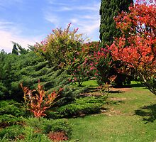 Nature's Colours - Sigurtà - Italy by sstarlightss