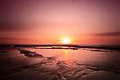 ~ the sunrise ~ by Adriana Glackin