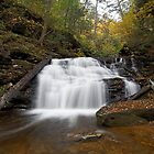 Mohican Falls (Autumn) by Tim Devine