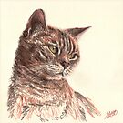 Gentle - Tabby cat in coloured pencil by SarahLittleArt