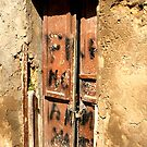 An old door #2 by Michele Filoscia