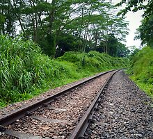 Diminishing Track by Mark Lee