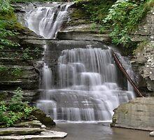 Unnamed falls at Robert Treman State Park by Jill Vadala