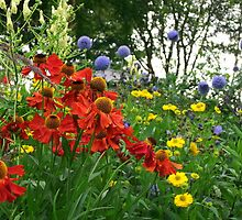 Colourful Flower Bed  by shelleybabe2