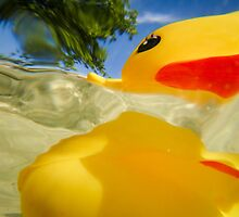 Abstract of Rubber Ducky by John Hartung