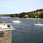 Salcombe, Devon. by TimLarge