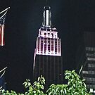 another night view of the Empire State Building by michael6076