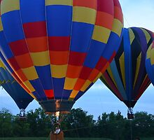 Hot Air Balloons (Daylight Hours) by IngramImagery