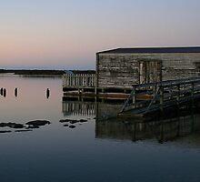 okarito lagoon south westland nz by rina  thompson