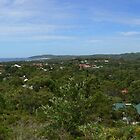 Byron Bay panorama by PhotosByG