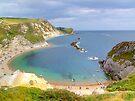 Man O War Bay (Spot the Seagull 2) by Colin J Williams Photography
