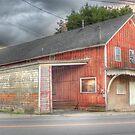 Hudson Sterling Coal - Cortland, NY by Edith Reynolds