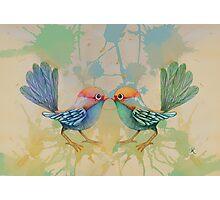 little love birds blue Photographic Print