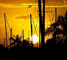 Ala Moana Harbor Sunset by Anadil Chowdhury