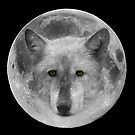 Wolf Moon by Mark Hughes