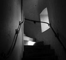 Scrabo Stairway by ragman
