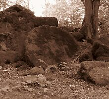 Woodland Millstone (Sepia Version) by wiggyofipswich