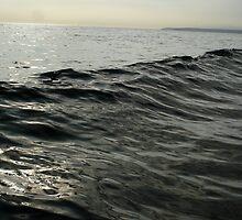 inky waves by Rod Gonzalez
