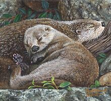 Sleeping Otters by artbyakiko