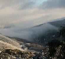 Morning Fog - Falls Creek by O(c)T YoungBearPhotography
