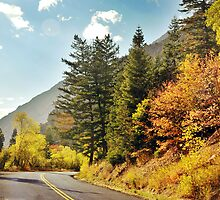 American Fork Canyon - Autumn Road by Ryan Houston