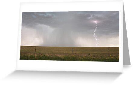 Colorado Lightning Storm by hedgie6