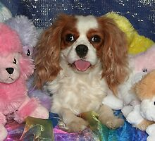 Cavalier With Cuddly Toys by Jenny Brice