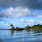 Fiji, the pearl of the Pacific by Jessy Willemse