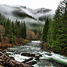 Winters Joy ~ Quartzville Creek Winter ~ by Charles & Patricia   Harkins ~ Picture Oregon