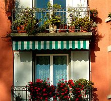 Pretty Swiss Window Box by Charmiene Maxwell-batten