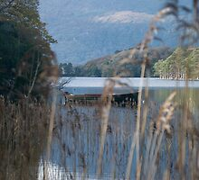 Kerry Mountains Killarney lakes in Ireland 14 by GeorgiaConroy