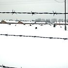 Birkenau In Winter Deep In Snow by Sarah Louise English