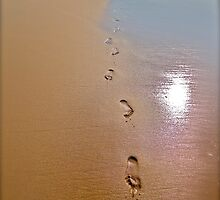 Life's foot prints by prideinq